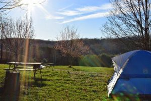 camping jaar