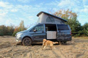 Dogscamper voor hondenliefhebbers