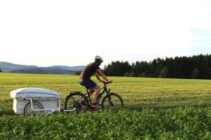 B Turtle fietsvouwwagen