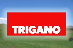 Trigano Group 2017