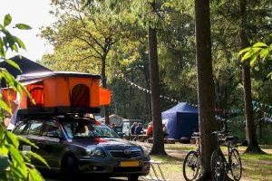 Belgisch daktentenfestival